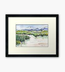 Wetland in Tarlton, Gauteng, South Africa Framed Print