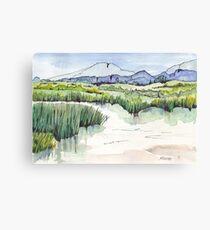 Wetland in Tarlton, Gauteng, South Africa Canvas Print