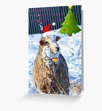 Hey! -  I Wanna Be Santa This Year! - Sheep - NZ Greeting Card