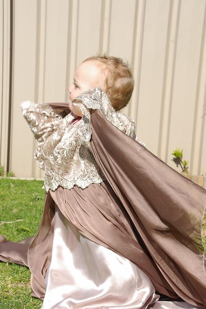 The Wedding dress by Deidre Cripwell