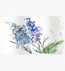 Blue serenity  Poster