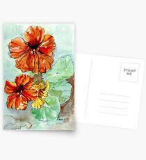 Nasturtiums, sunny Vit. C Postcards