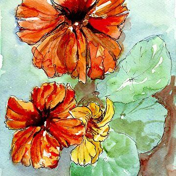 Nasturtiums, sunny Vit. C by MareeClarkson