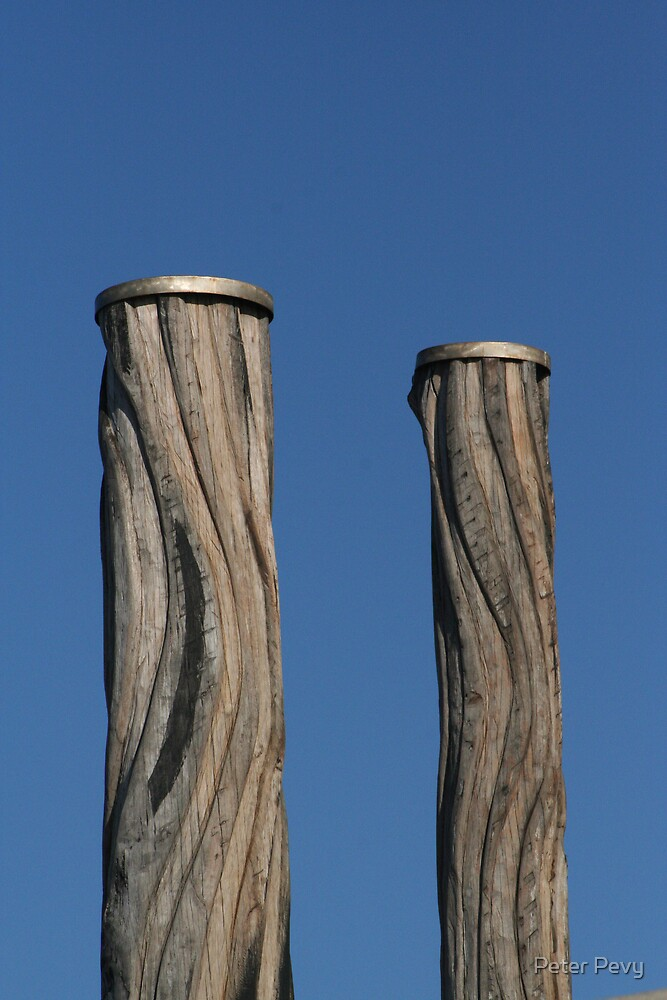 Newcastle Baths Poles by Peter Pevy