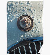 1954 Jaguar XK120 Roadster Emblem -0044c Poster