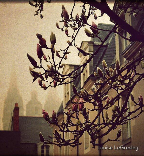 { morning fog } by Louise LeGresley