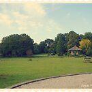 English Garden In Steenwijk (Ramswoerthe) by patjila