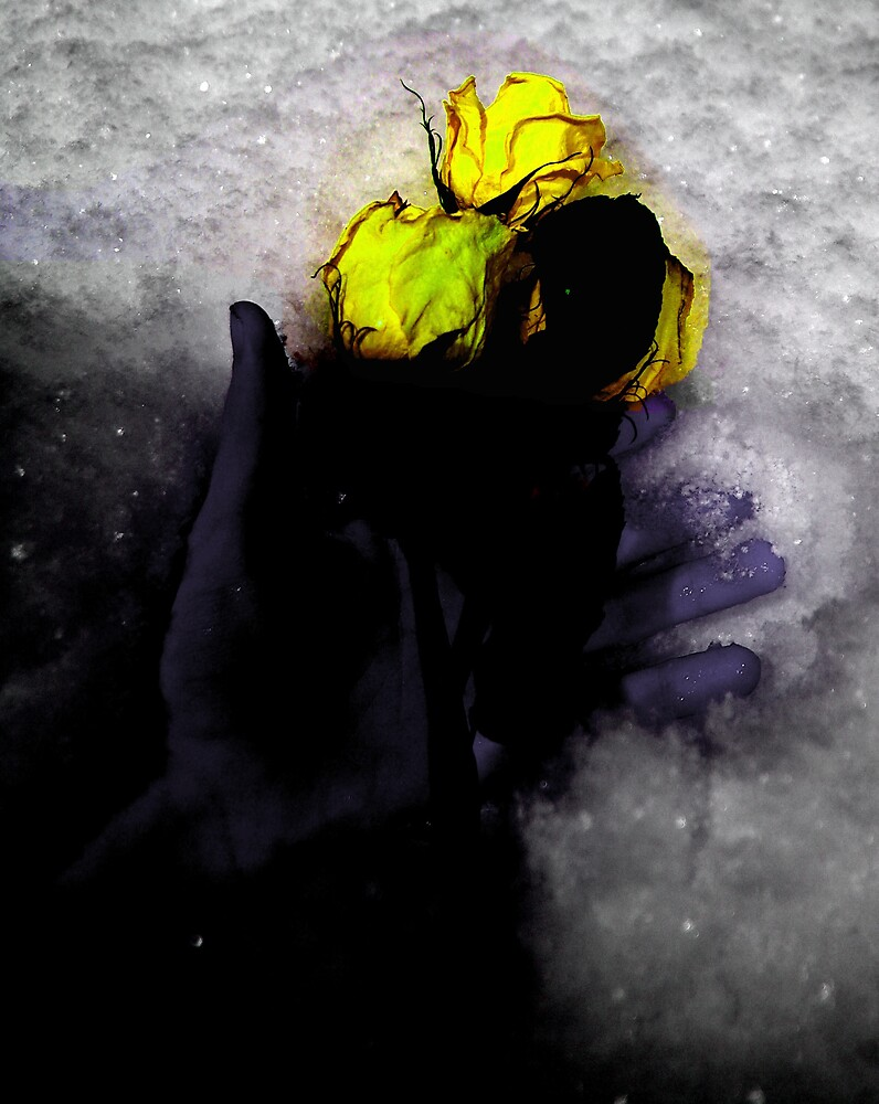 Winter's Grasp. by Michael Gatch