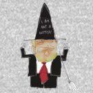 Not a witch by Matt Mawson