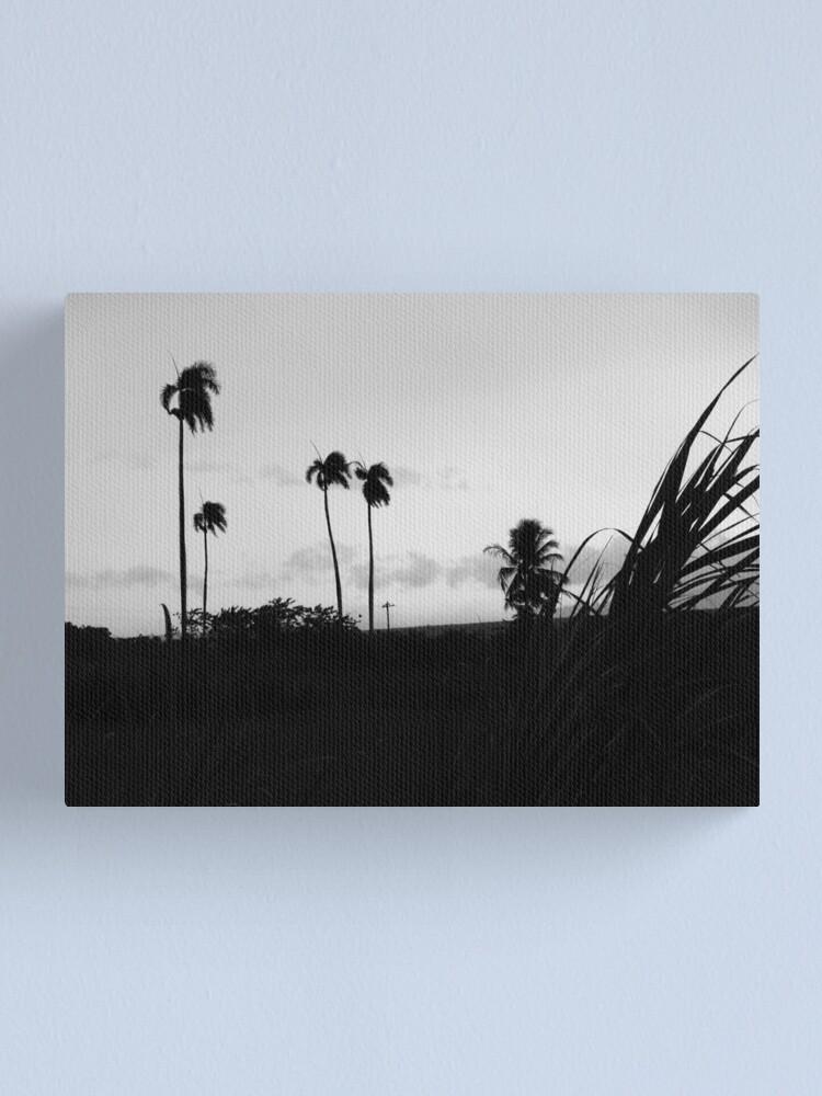 Alternate view of hurricane Canvas Print