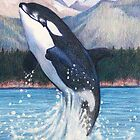 Orca by WyoClements