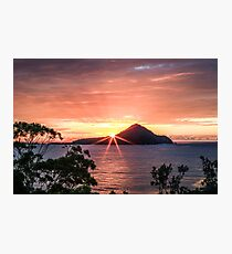 Cabbage Tree Island Sunrise Photographic Print