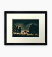 Summer - Faith Framed Print