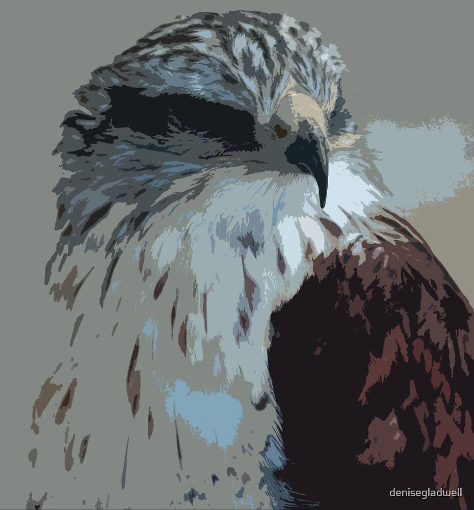 Hawk by denisegladwell