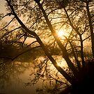 Bradford on Avon Silhouette 2 by nakomis