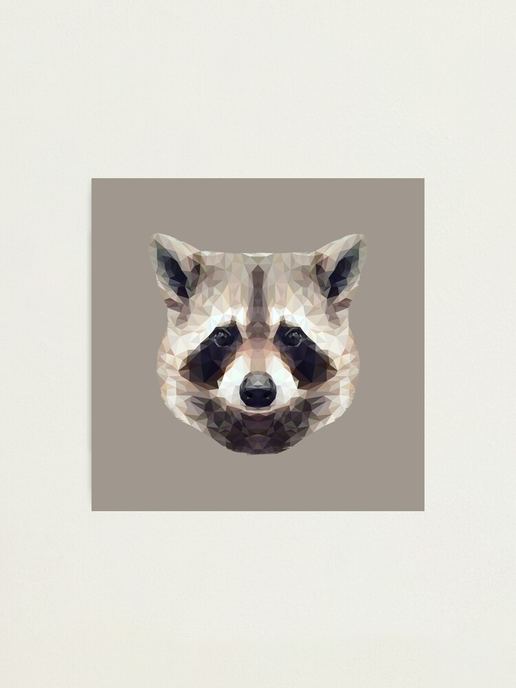 Alternate view of The Raccoon Photographic Print