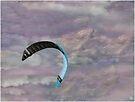 The Kite No 3 by Wayne King