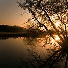 Bradford on Avon Sunrise by nakomis