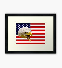 The Flag and the Eagle Framed Print