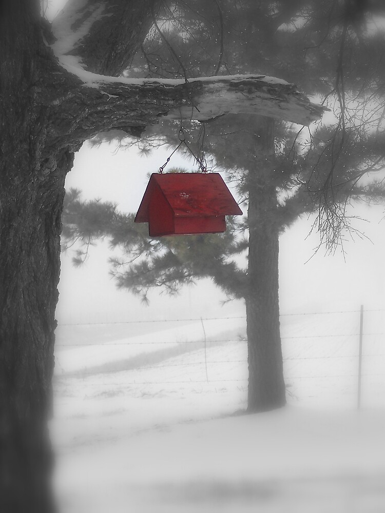 The Red Birdhouse by LvMyBxrs