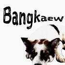 Thai Bangkaew Dog by Thinglish Lifestyle