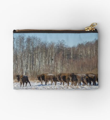 Bison Herd Studio Pouch
