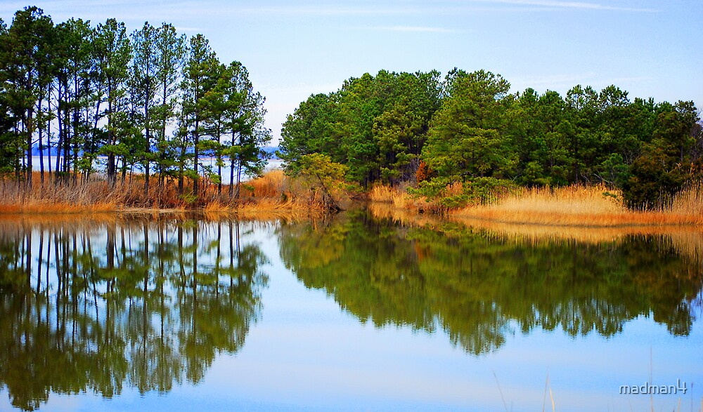 James River Reflections 1 by madman4