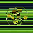 Hexagons on Stripes by Dana Roper
