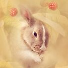 Rabbit by Ellen van Deelen