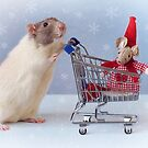 Christmas Shopping by Ellen van Deelen