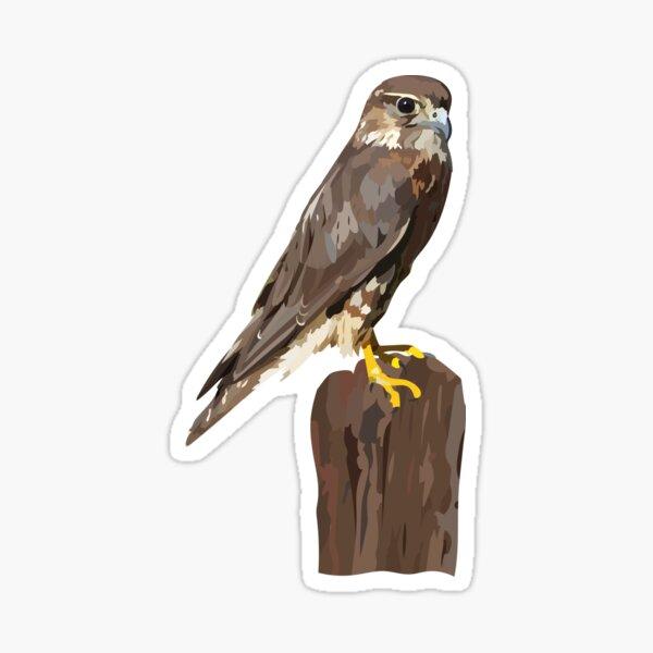 Isla the Merlin Sticker