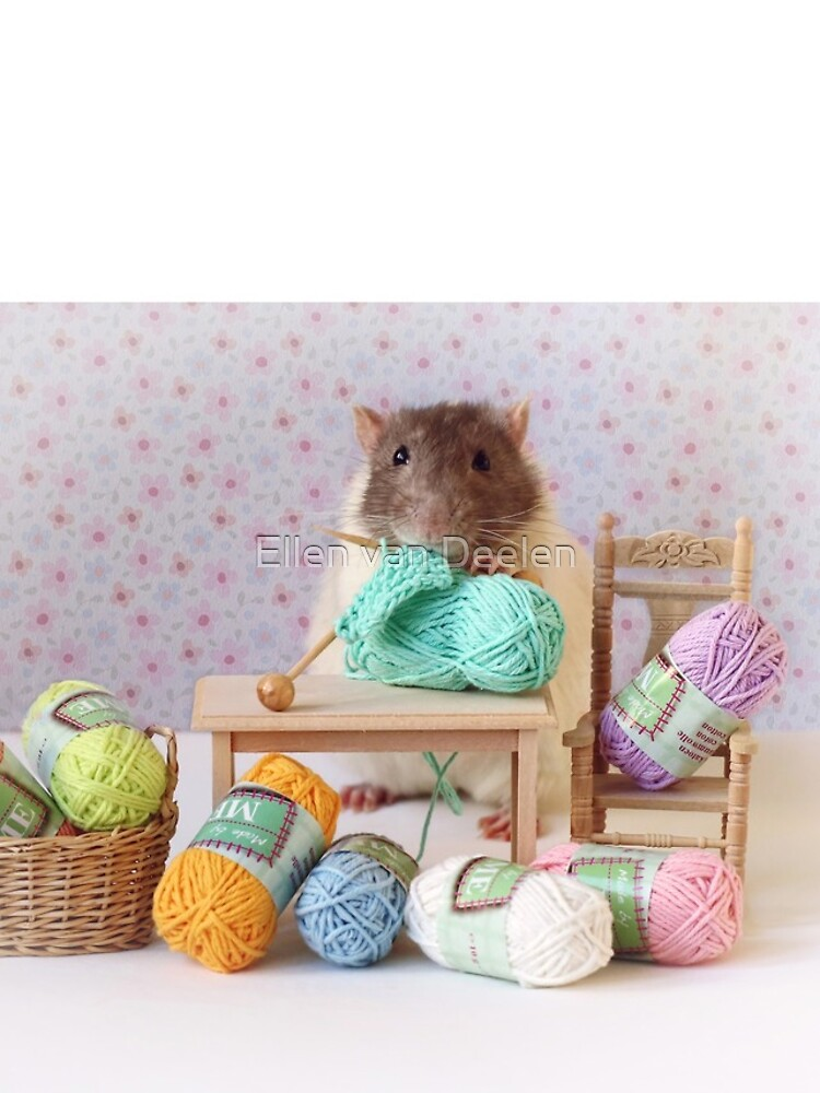 Snoozy wanted to knit ! by Ellen
