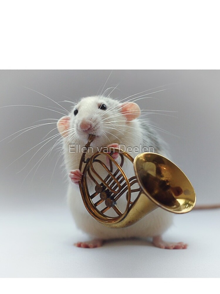 Moppy and his french horn by Ellen