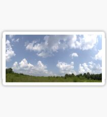 HDR Composite - Overgrowth in Nature Preserve Sticker