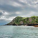 Fort Hillsborough Devon by Avril Harris