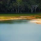 Lake Tinaroo.....Wet Tropics.....North Queensland by Imi Koetz