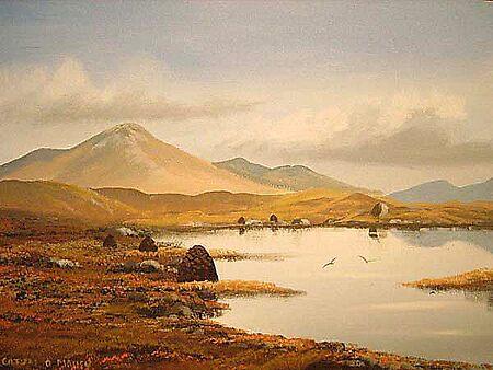 connemara bogland by cathal  o malley
