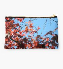 Red on Blue Studio Pouch