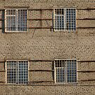 Apartments with bars on windows by mrivserg
