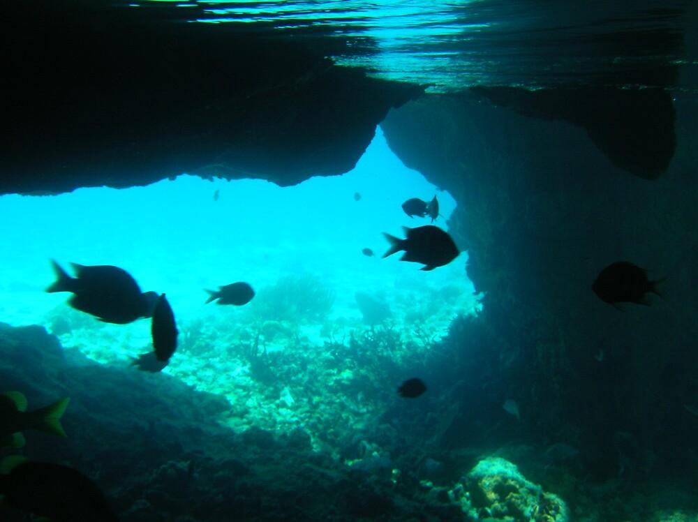 Underwater beauty by junebug06