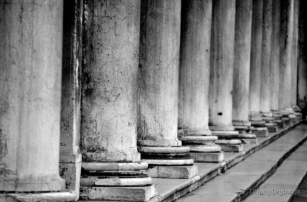 Columns, Procuratie Nuove by Tiffany Dryburgh