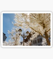 Strasbourg cathedral view in infrared, France Sticker