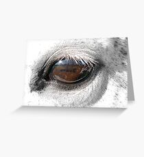 Reflection In A Golden Eye - Horse - VZ Greeting Card