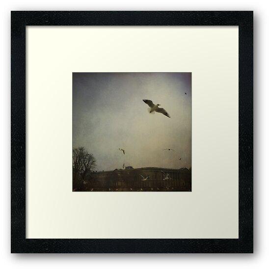 Fly away by laurentlesax