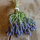 Just a little lavender on an old table. by alan shapiro