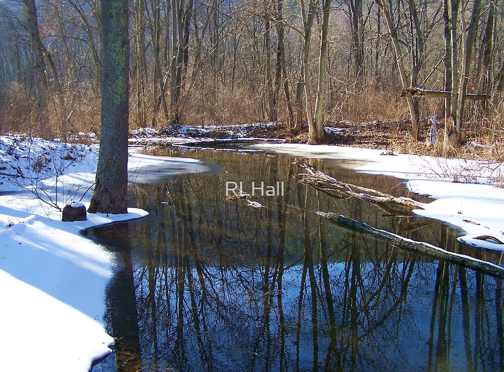 Still Water by RLHall