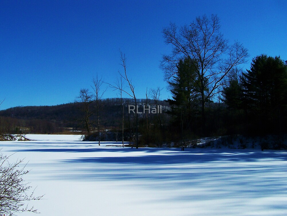 Winter Blues by RLHall
