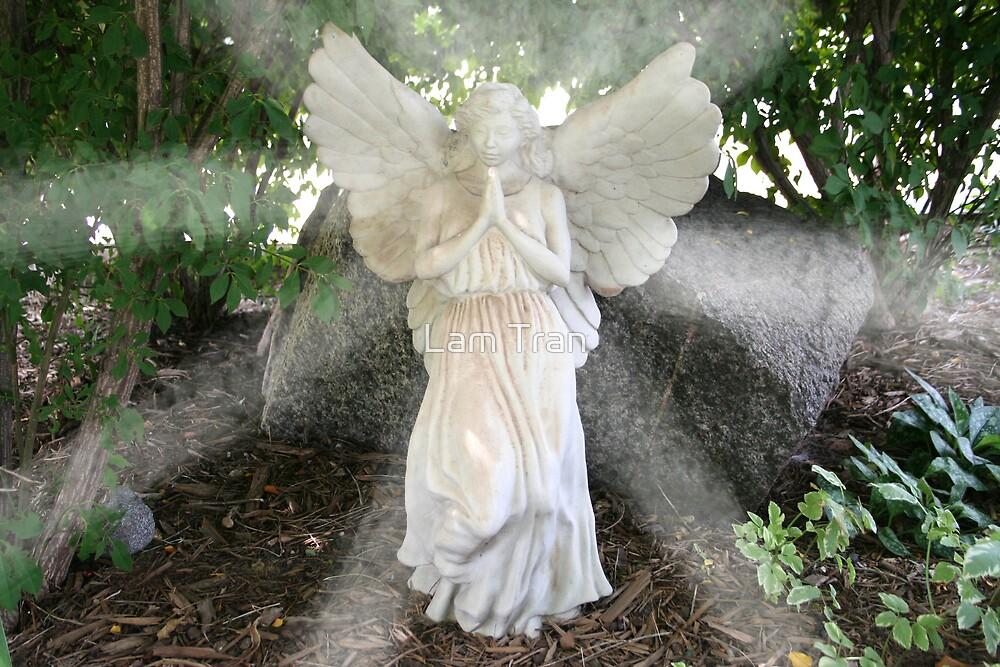 Angel by Lam Tran
