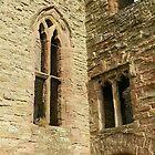 Two Windows by hans p olsen