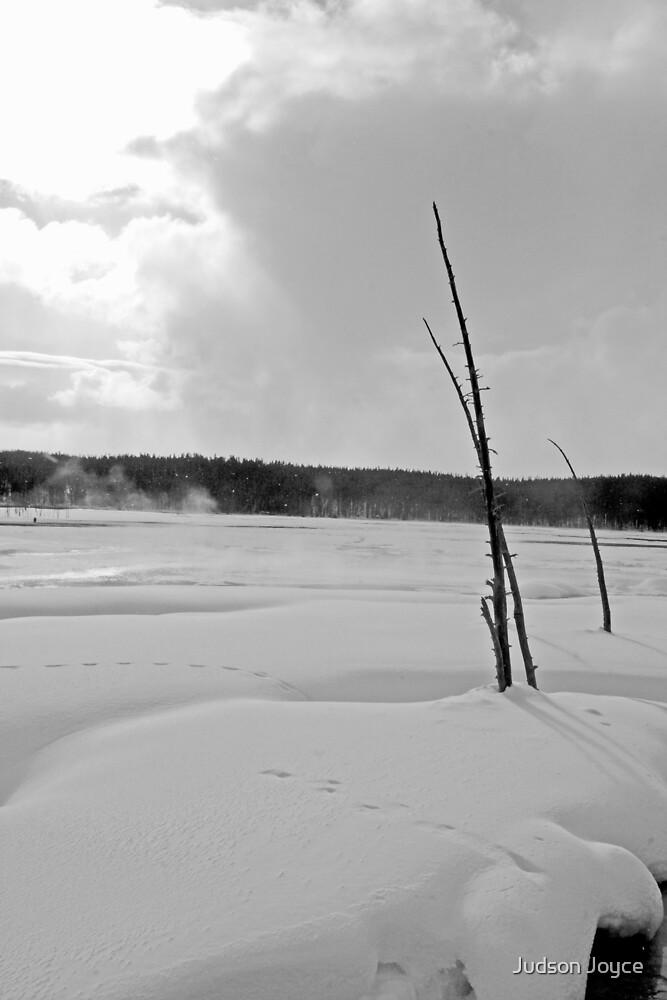Biting Cold by Judson Joyce